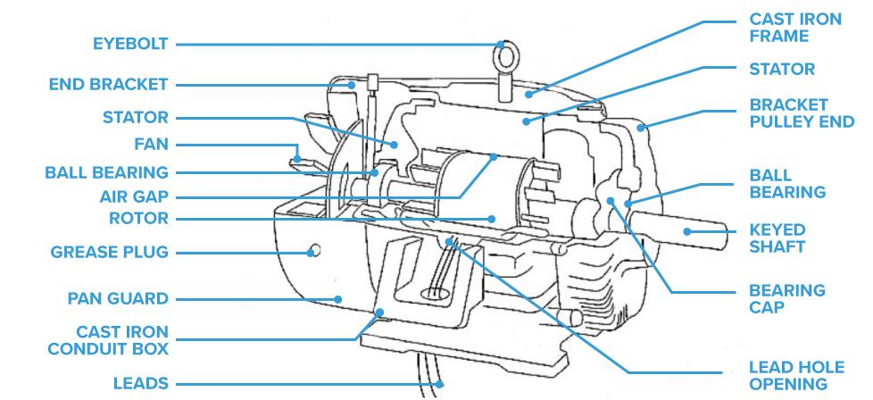 Ac-motor-diagram